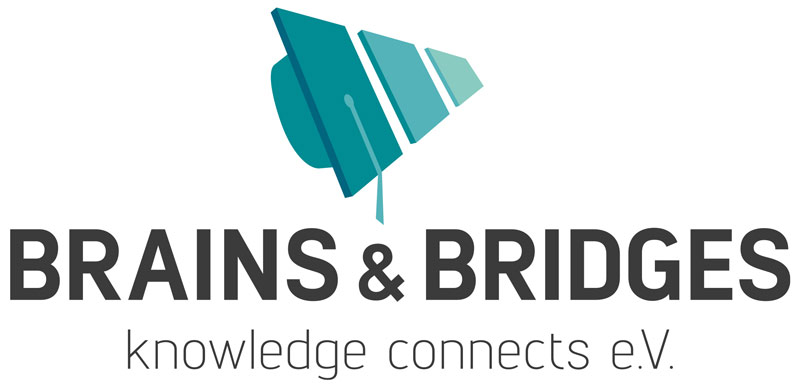 Brains & Bridges